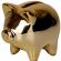Profilbild von goldenpig