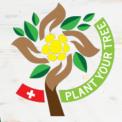 Kostenlos einen Baum pflanzen + Zertifikat erhalten