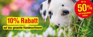 Qualipet: 10% Rabatt auf das ganze Hunde-Sortiment + gratis 500g HARMONY Dog Deluxe Snack Wild ab CHF 30.-