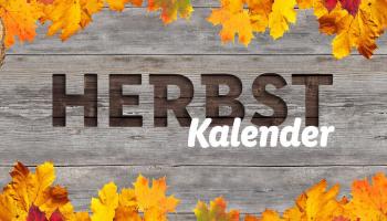 Lidl: Herbstkalender mit täglichen Tiefpreisen