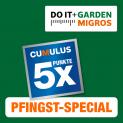 5x Cumulus-Punkte aufs gesamte Do it + Garden Sortiment
