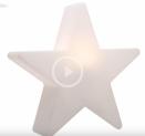 8 Seasons Design Shining Star bei DayDeal