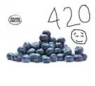 500 Gramm Heidelbeeren bei Coop / 400 Gramm bei Aldi