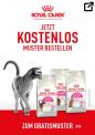 Gratis Royal Canin Katzenfutter nach Hause bestellen