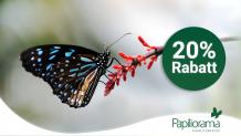 20% Rabatt auf alle Eintrittspreise im Papiliorama Kerzers (Online)