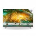 SONY KD49XH8096 4K-Fernseher mit Triluminos-Display bei Interdiscount