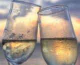 20% auf Wein bei siroop, z.B. Hannes Reeh Zweigelt Unplugged 2015 75 cl für CHF 18.- statt CHF 22.50