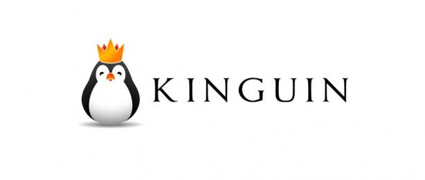 Kinguin DE