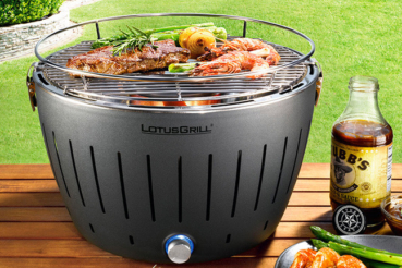 LotusGrill XL bei DeinDeal