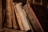 20% auf alle Bücher bei buch.ch