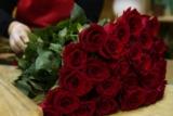 [Zürich] 10 rote Rosen zum Abholen am Valentinstag für CHF 29.- bei Blumenhalle