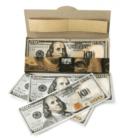 10 Stück Zigarettenpapier bei Zapals in 100 Dollar Design